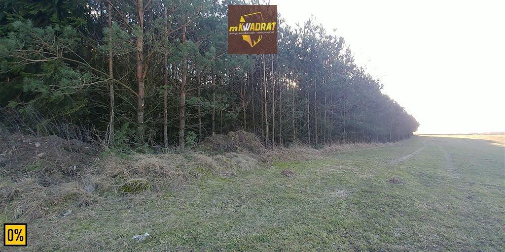 Działka leśna na sprzedaż Drygały  42100m2 Foto 5