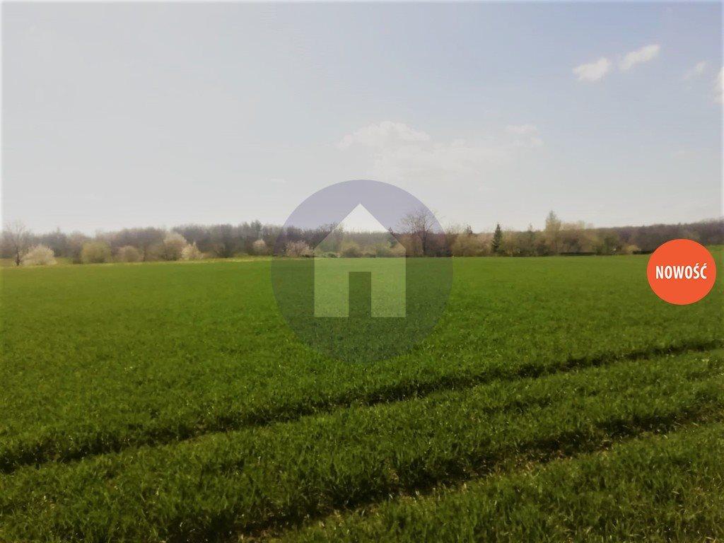 Działka komercyjna na sprzedaż Marcinowice  5950m2 Foto 3