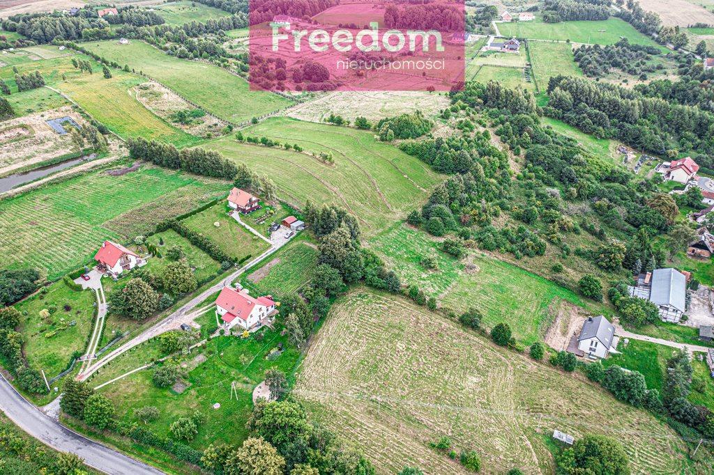 Działka budowlana na sprzedaż Łęcze  9300m2 Foto 8