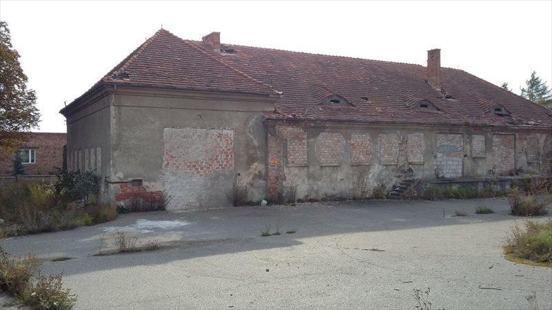 Dom na sprzedaż Grudziądz, Jagiellończyka  3000m2 Foto 6