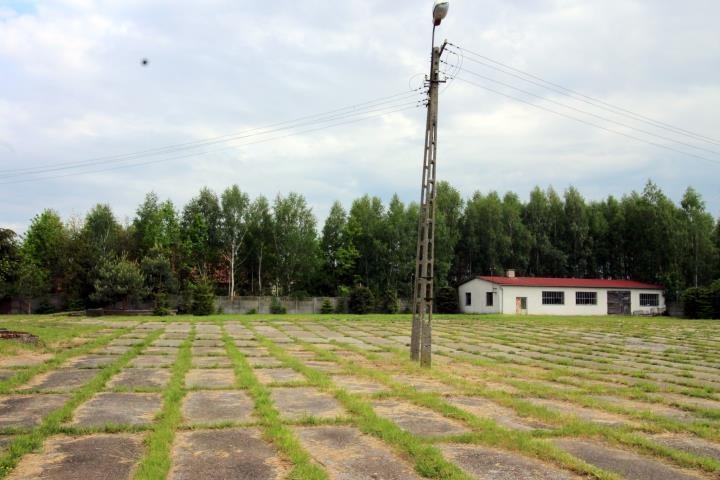 Lokal użytkowy na sprzedaż Olszewo  1592m2 Foto 7