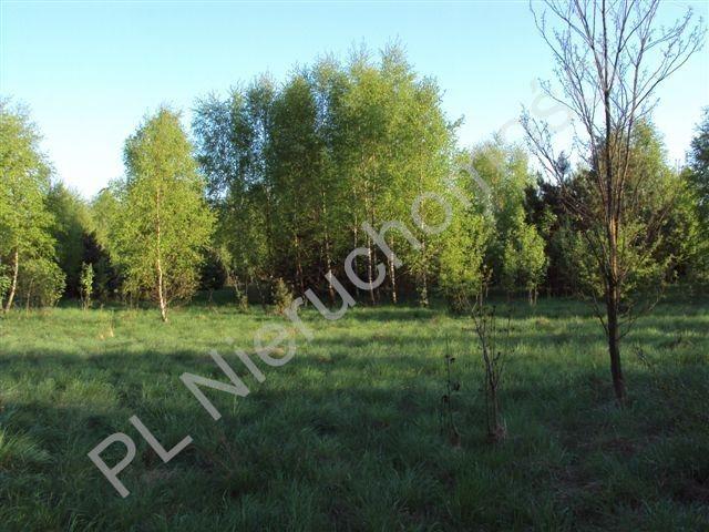 Działka rolna na sprzedaż Osuchów  27100m2 Foto 4