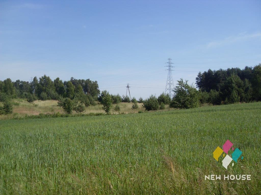 Działka rolna na sprzedaż Mątki  3000m2 Foto 2