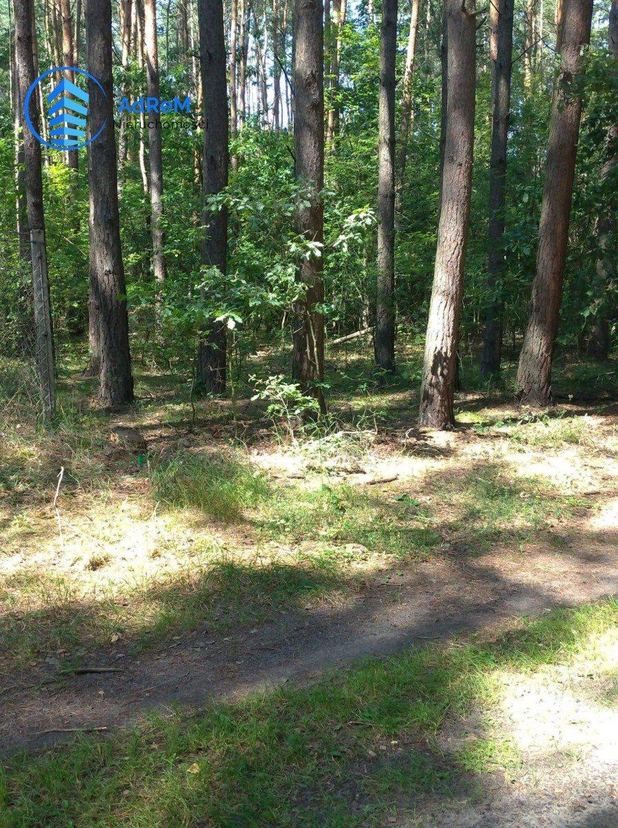 Działka leśna na sprzedaż Bogatki, Azalii  1800m2 Foto 2