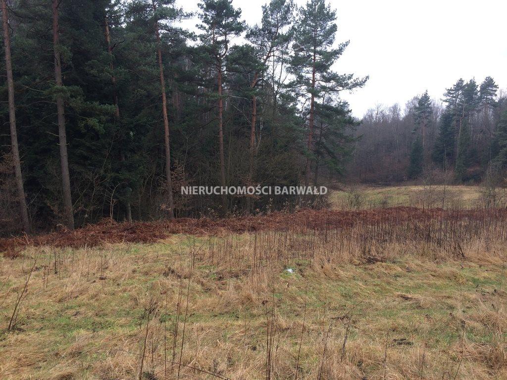 Działka rolna na sprzedaż Barwałd Dolny  1412m2 Foto 2
