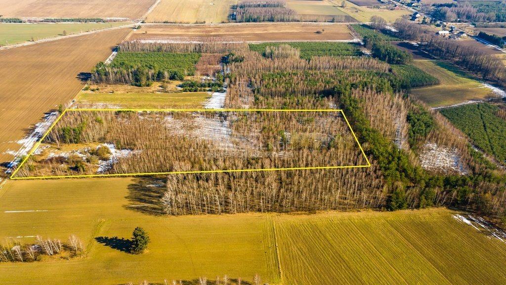Działka rolna na sprzedaż Siemichocze  45300m2 Foto 6