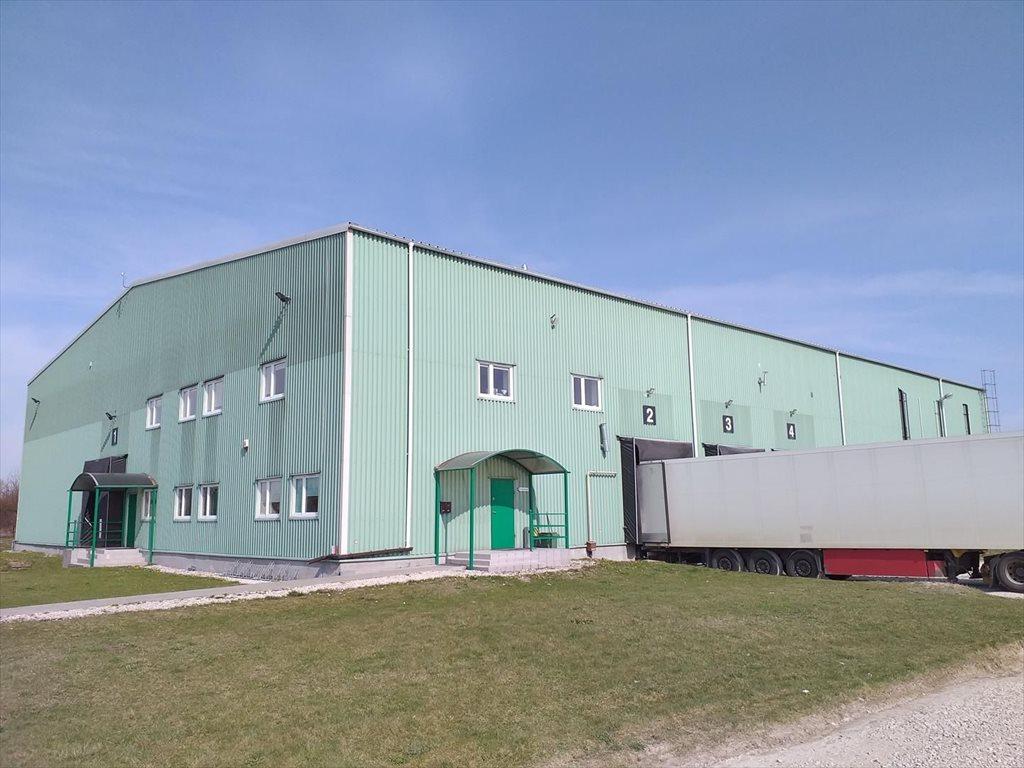 Lokal użytkowy na sprzedaż Białobrzegi  2000m2 Foto 6