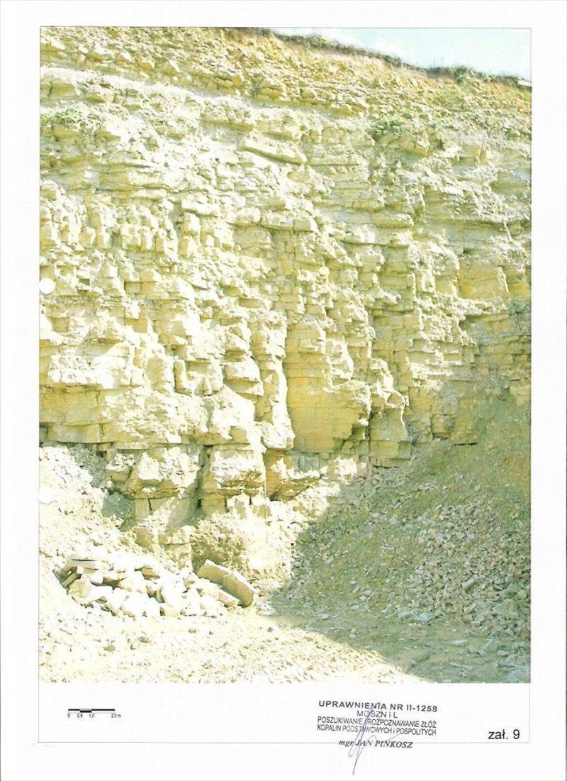 Działka budowlana na sprzedaż Tarnowskie Góry, Repty, z koncesją  5000m2 Foto 1