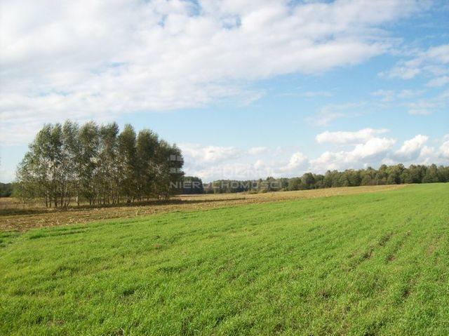 Działka rolna na sprzedaż Janowicze  3001m2 Foto 1