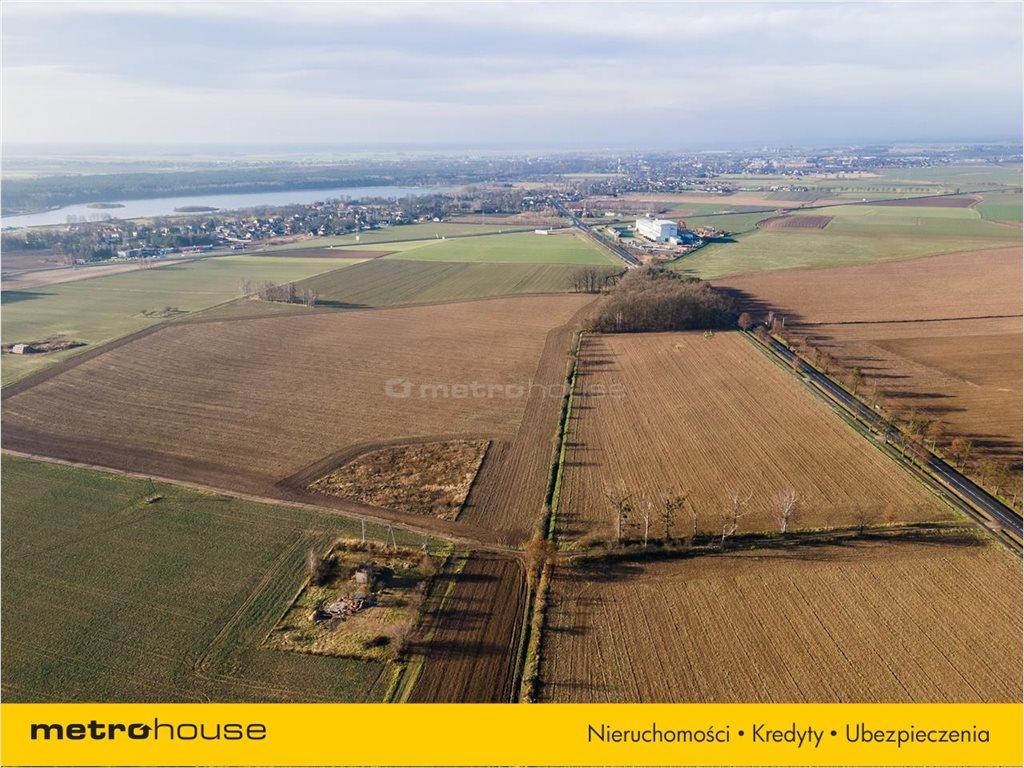 Działka rolna na sprzedaż Bogdańczowice, Kluczbork  57700m2 Foto 5