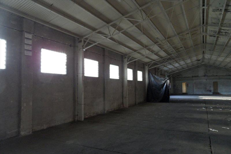 Działka przemysłowo-handlowa na sprzedaż Śrem, Podwale  5691m2 Foto 8
