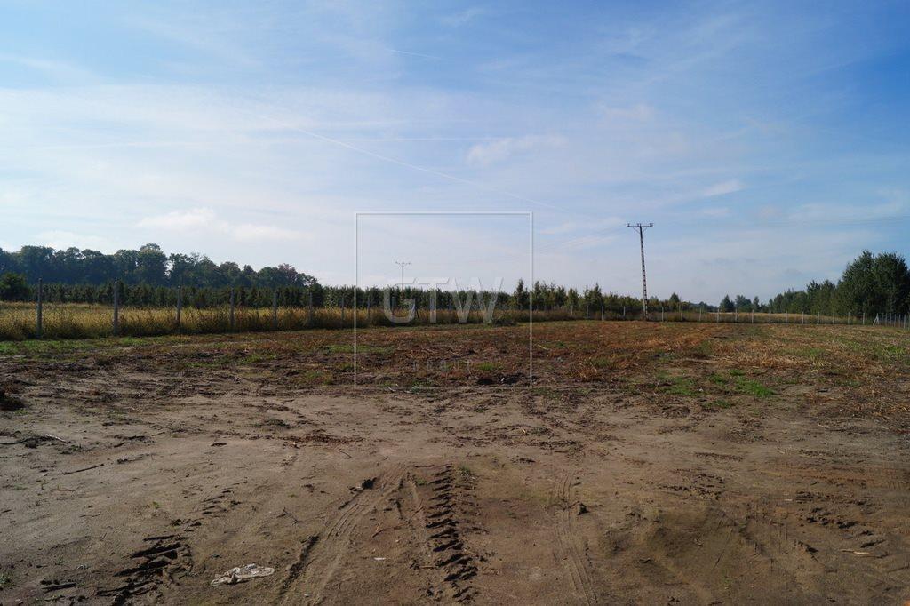 Działka rolna na sprzedaż Kobylin  3200m2 Foto 5