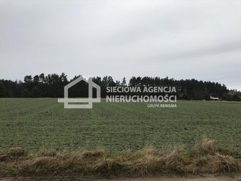 Działka rolna na sprzedaż Sasino  12100m2 Foto 4