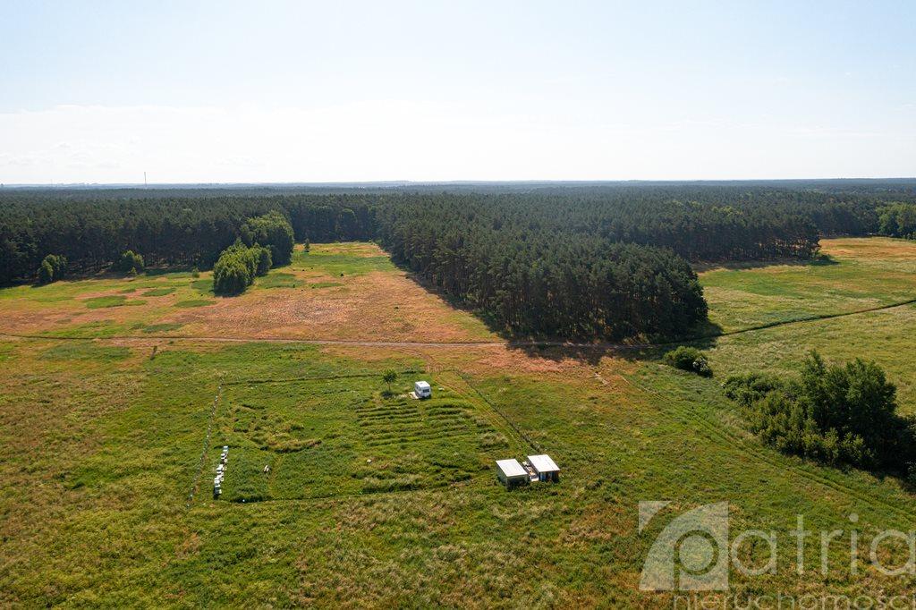 Działka rolna na sprzedaż Komarowo  3287m2 Foto 5