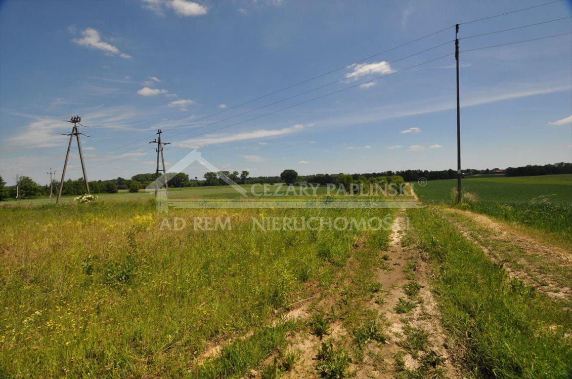 Działka rolna na sprzedaż Tomaszowice-Kolonia, Tomaszowice Kolonia  3000m2 Foto 5