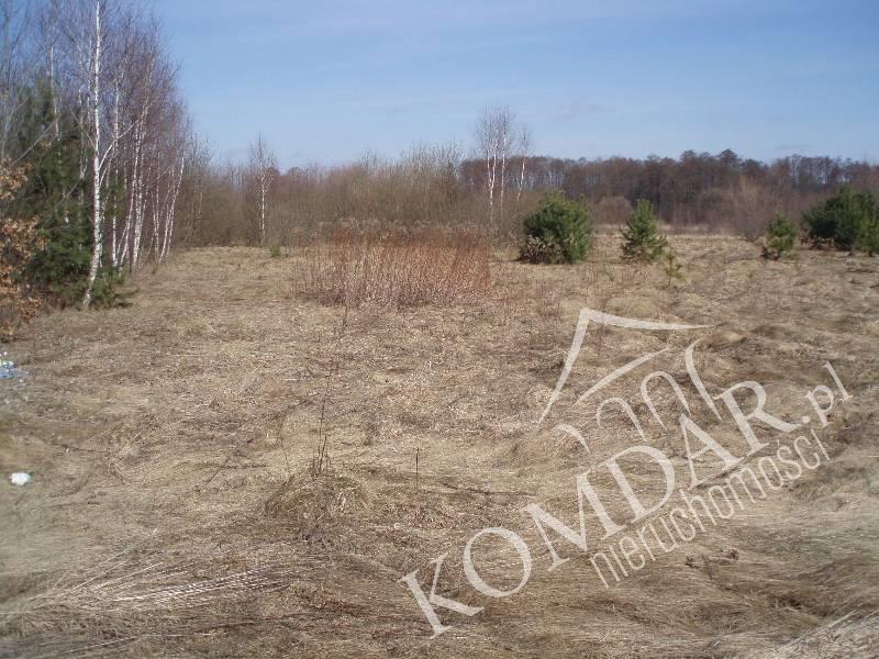 Działka rolna na sprzedaż Pokrzywnica  49500m2 Foto 2
