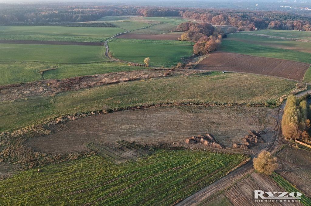 Działka rolna na sprzedaż Przęsocin  12800m2 Foto 10