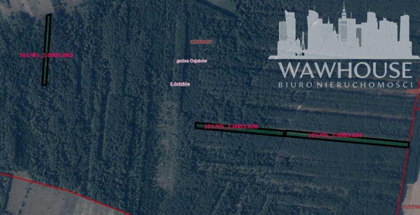 Działka leśna na sprzedaż Czernice  34700m2 Foto 3