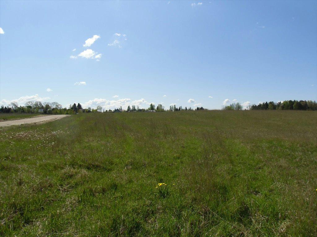 Działka rolna na sprzedaż Bojano, Wołoszyna  180000m2 Foto 4