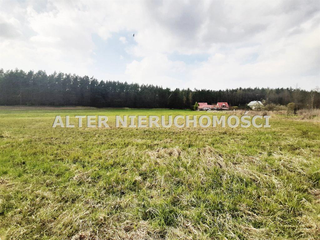 Działka rekreacyjna na sprzedaż Białobrzegi  3800m2 Foto 4