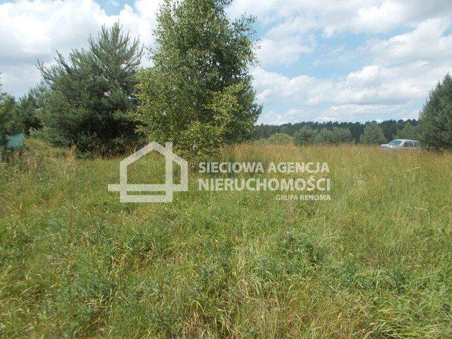 Działka siedliskowa na sprzedaż Branica  5199m2 Foto 6