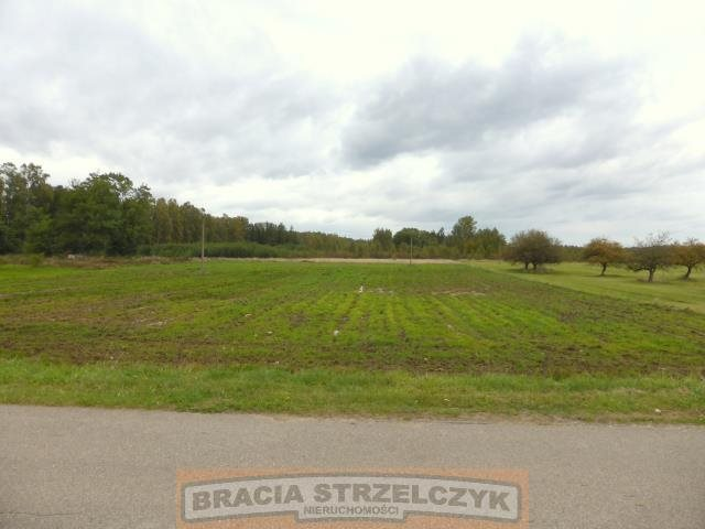 Działka rolna na sprzedaż Trzepowo  6000m2 Foto 1