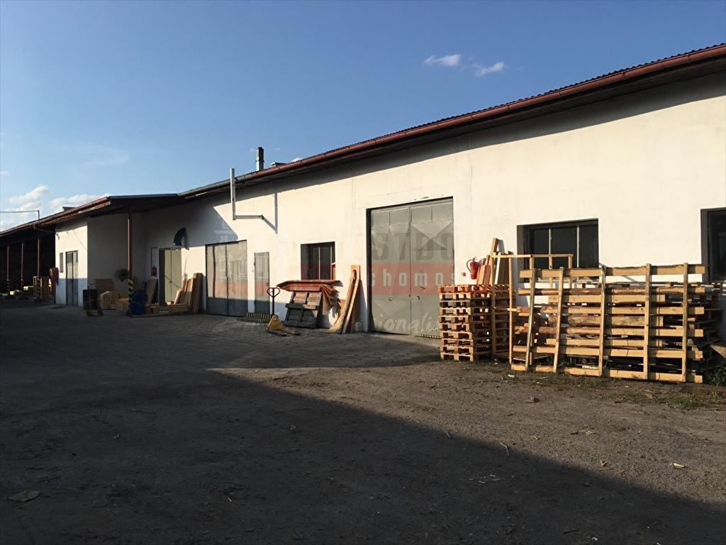 Lokal użytkowy na sprzedaż Opole  844m2 Foto 2