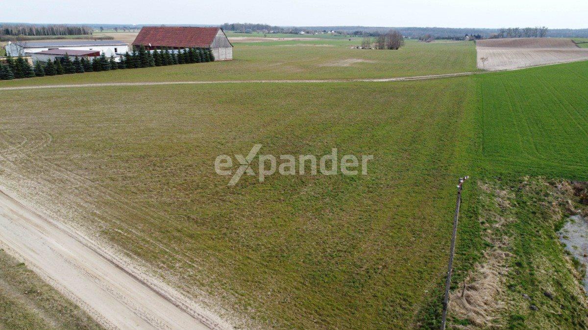 Działka rolna na sprzedaż Potrzanowo  4800m2 Foto 3