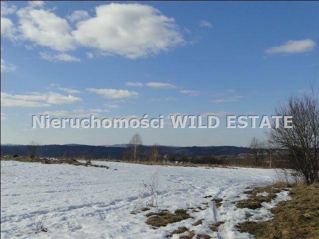 Działka rolna na sprzedaż Lesko, Lesko  4225m2 Foto 1