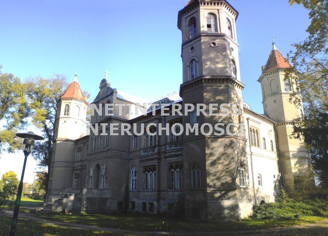 Lokal użytkowy na sprzedaż Dąbrówka Wielkopolska  4500m2 Foto 2