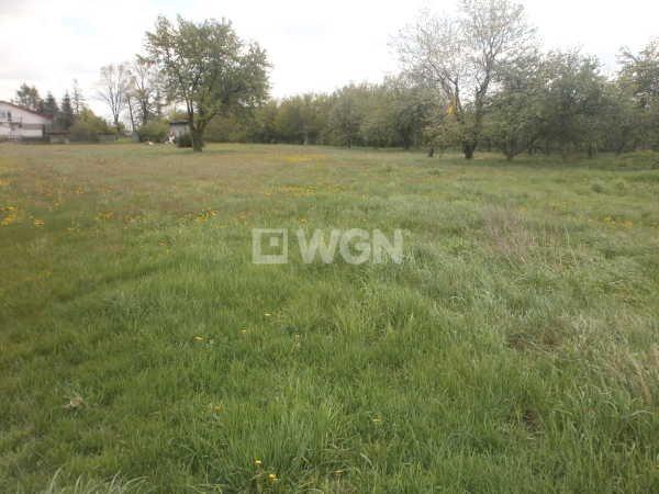 Działka rolna na sprzedaż Czarny Las, Częstochowska  23000m2 Foto 1