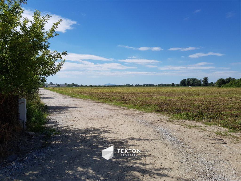 Działka rolna na sprzedaż Mokronos Dolny, Morelowa  3000m2 Foto 4