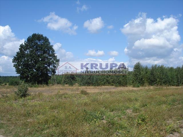 Działka rolna na sprzedaż Jachranka, Letnia (1)  970m2 Foto 7