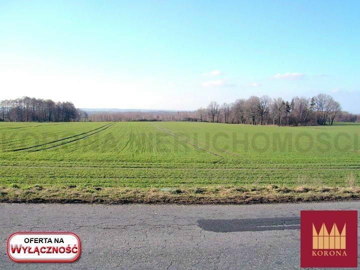 Działka rolna na sprzedaż Adamowice  51000m2 Foto 4