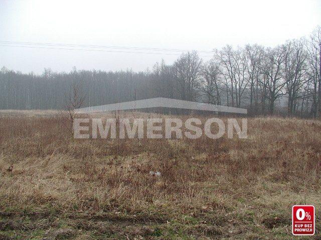 Działka rolna na sprzedaż Miękinia, Zabór Wielki, Zachodnia  17273m2 Foto 1