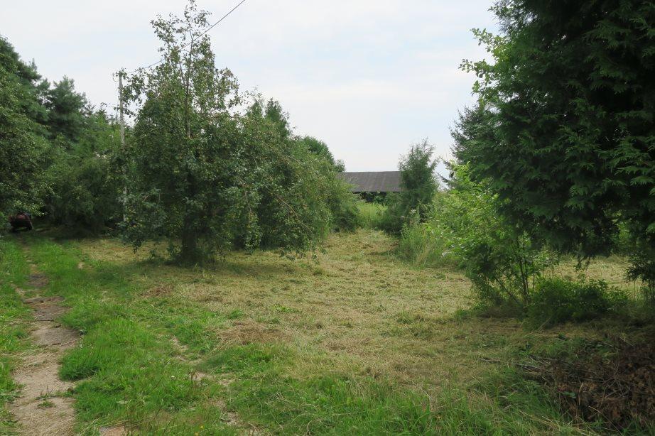 Działka budowlana na sprzedaż Puszcza Mariańska  1900m2 Foto 1
