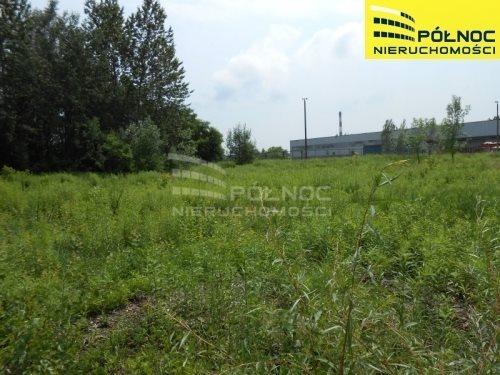 Działka przemysłowo-handlowa na sprzedaż Sosnowiec, Niwka  11744m2 Foto 1