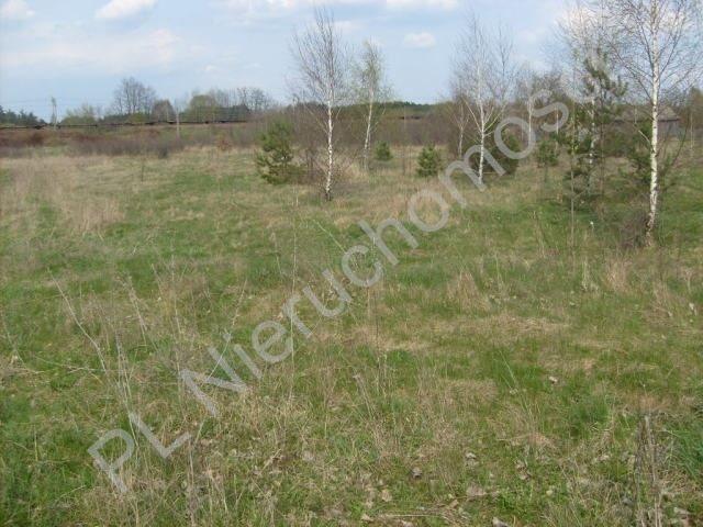 Działka rolna na sprzedaż Mszczonów  18000m2 Foto 4