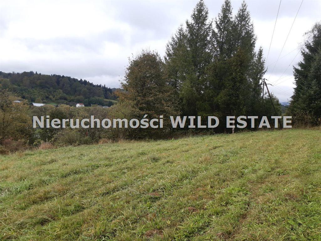 Działka rolna na sprzedaż Olszanica, Olszanica  4017m2 Foto 3