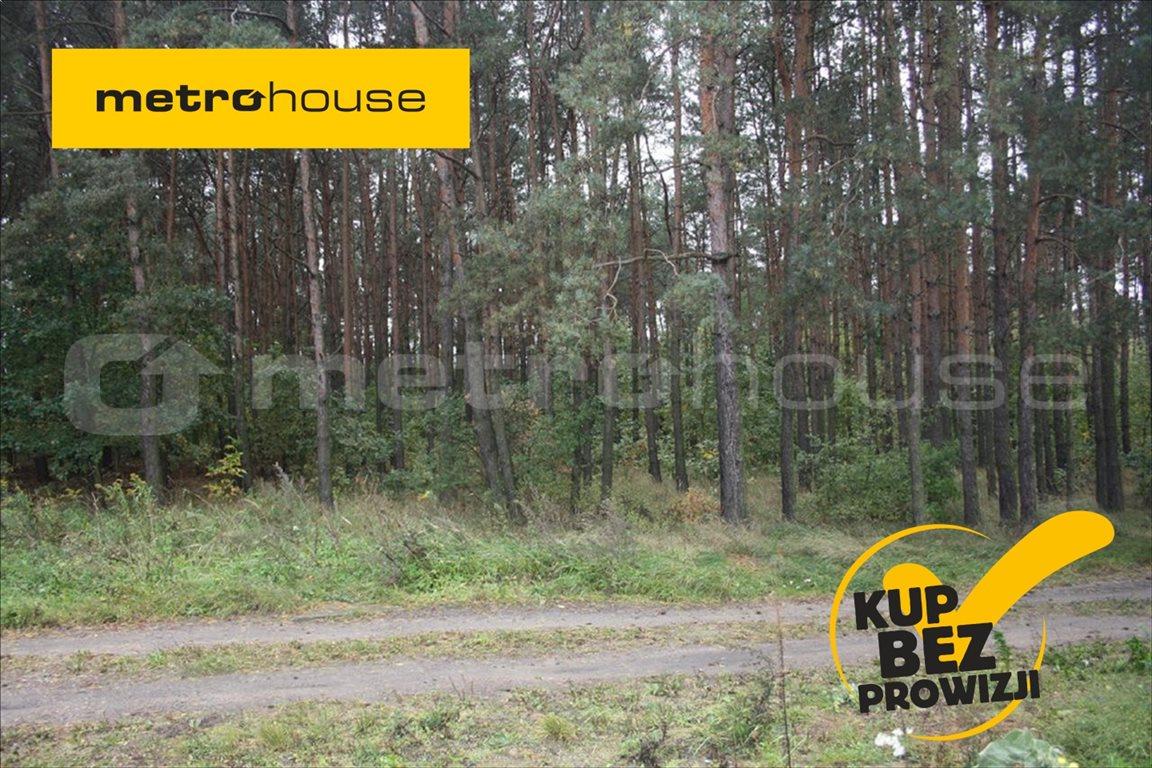 Działka leśna na sprzedaż Skierniewice, Skierniewice  8837m2 Foto 1