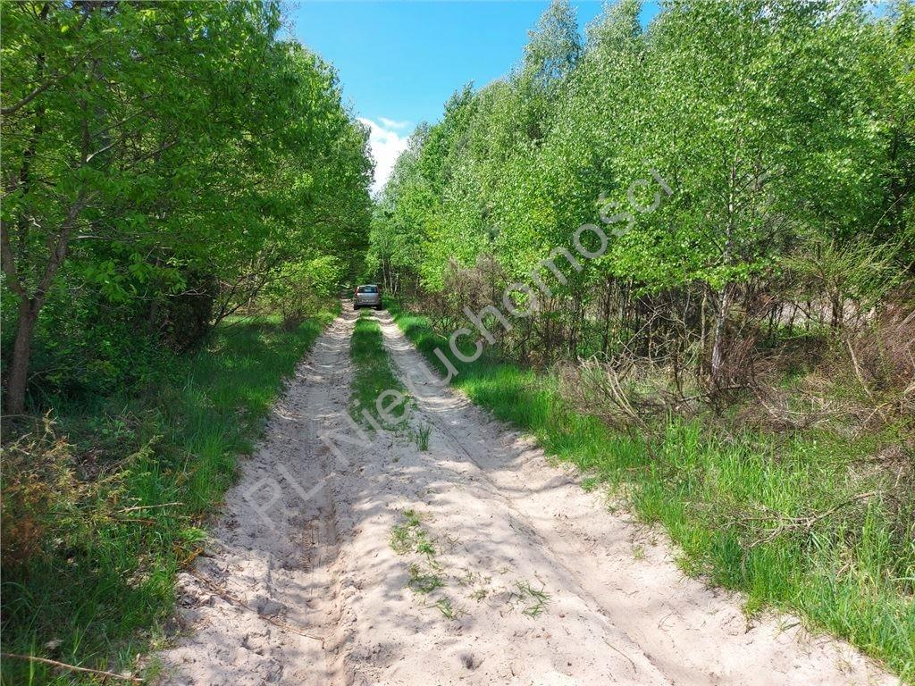 Działka rolna na sprzedaż Stare Groszki  12200m2 Foto 11