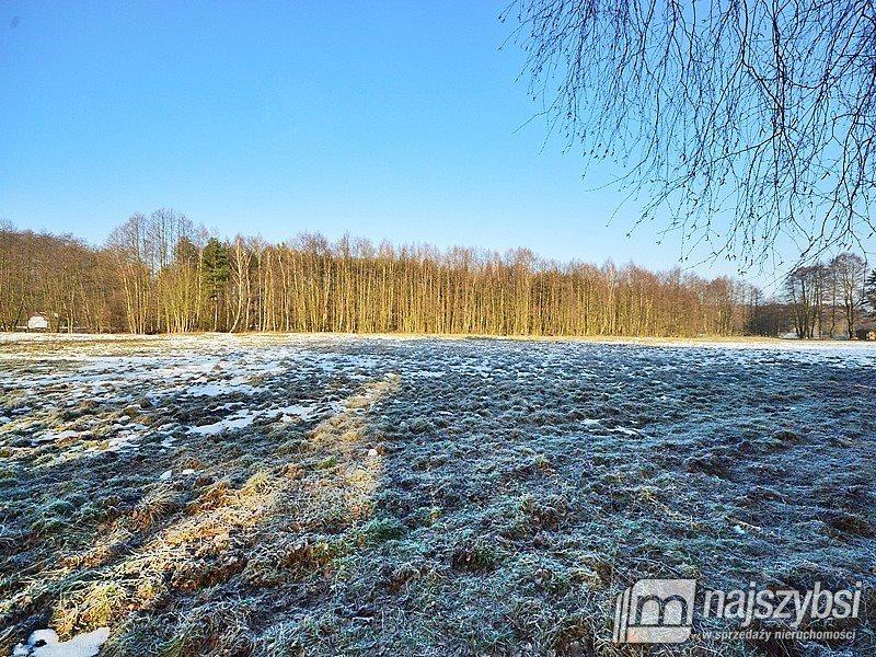 Działka inwestycyjna na sprzedaż Tanowo, wieś  3166m2 Foto 6