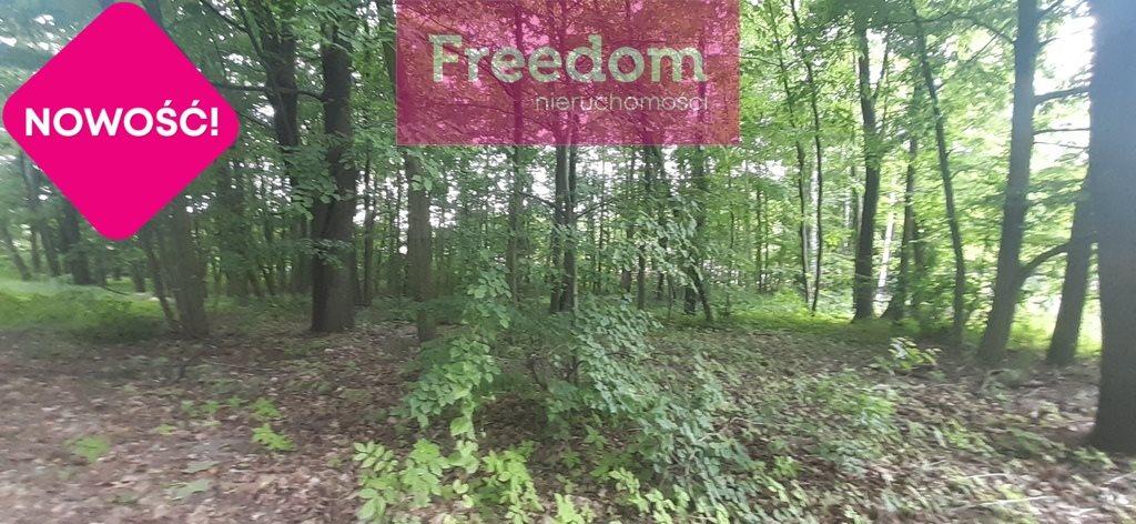 Działka leśna na sprzedaż Ustronie, Ozorkowska  3725m2 Foto 2