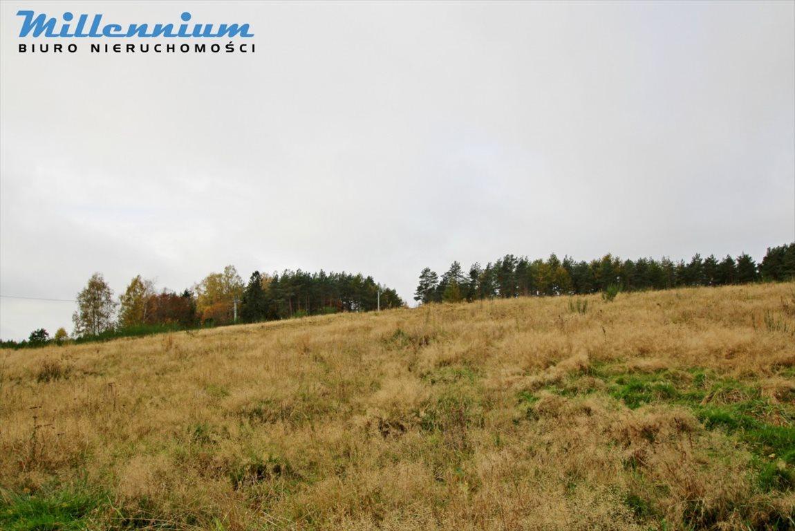 Działka rolna na sprzedaż Nowy Dwór Wejherowski  18766m2 Foto 2