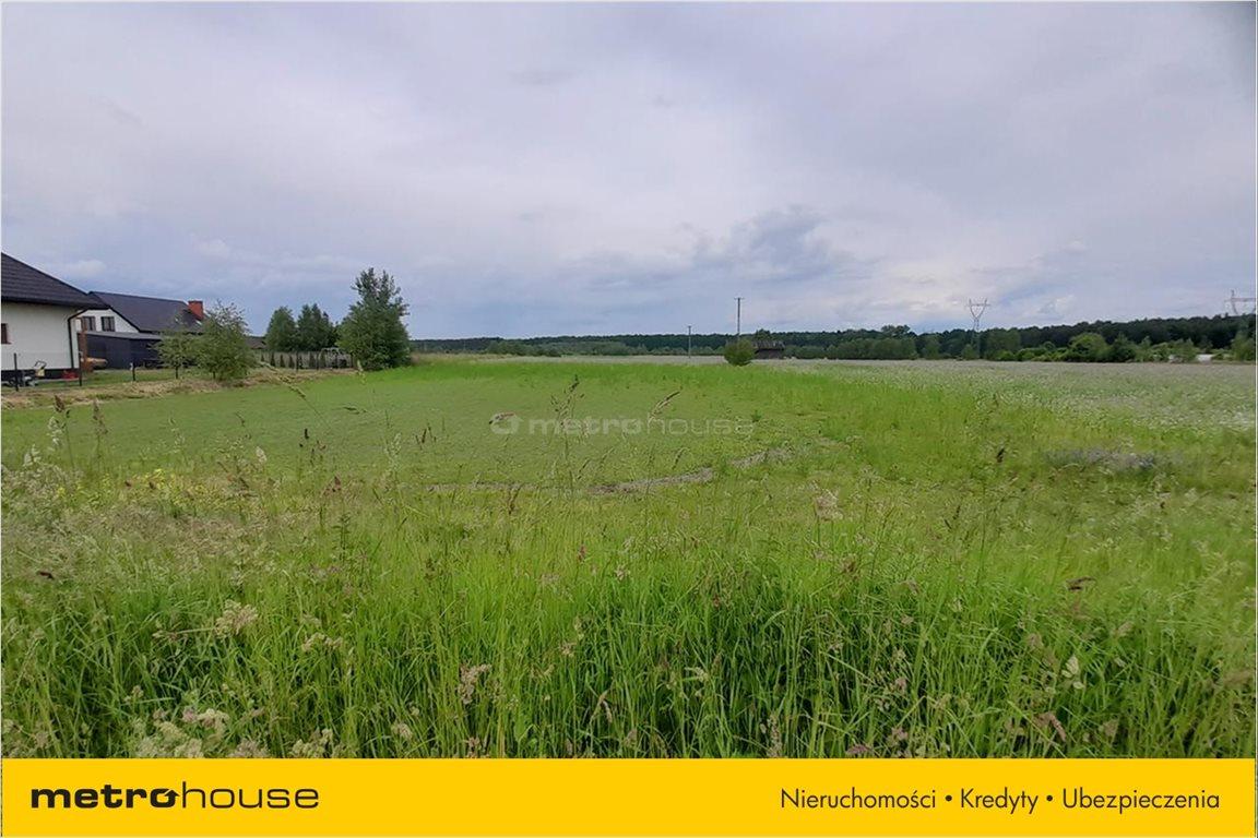 Działka rolna na sprzedaż Milejowice, Zakrzew  1425m2 Foto 5