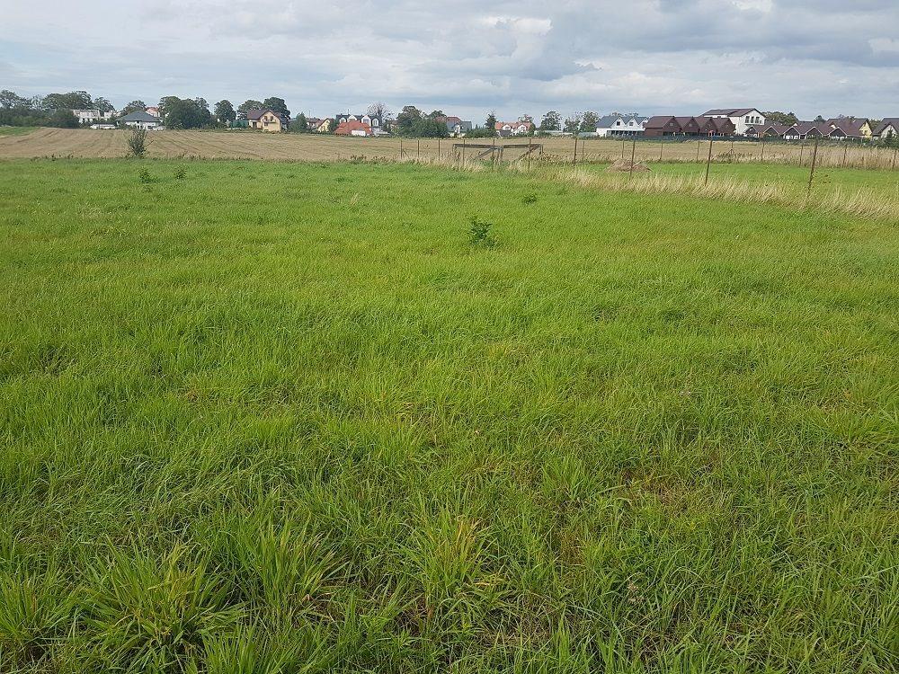 Działka budowlana na sprzedaż Władysławowo, Centrum, Dojazd z ul. Marii Dąbrowskiej  1325m2 Foto 1