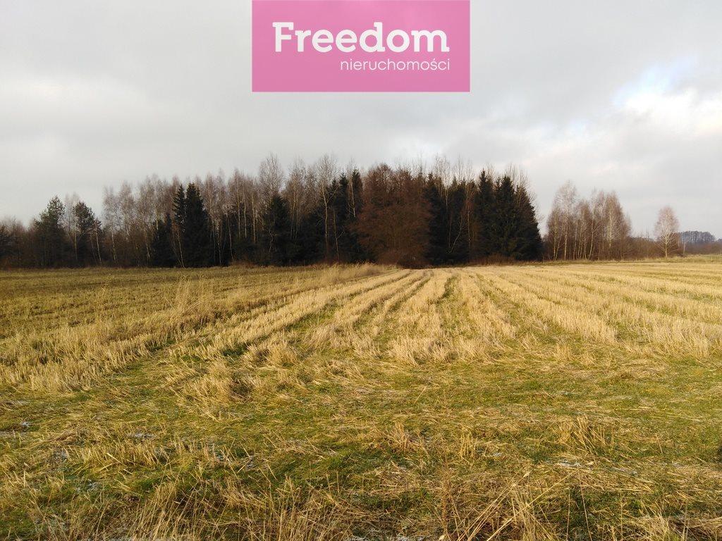 Działka rolna na sprzedaż Zaręby, Gajówki  14000m2 Foto 3