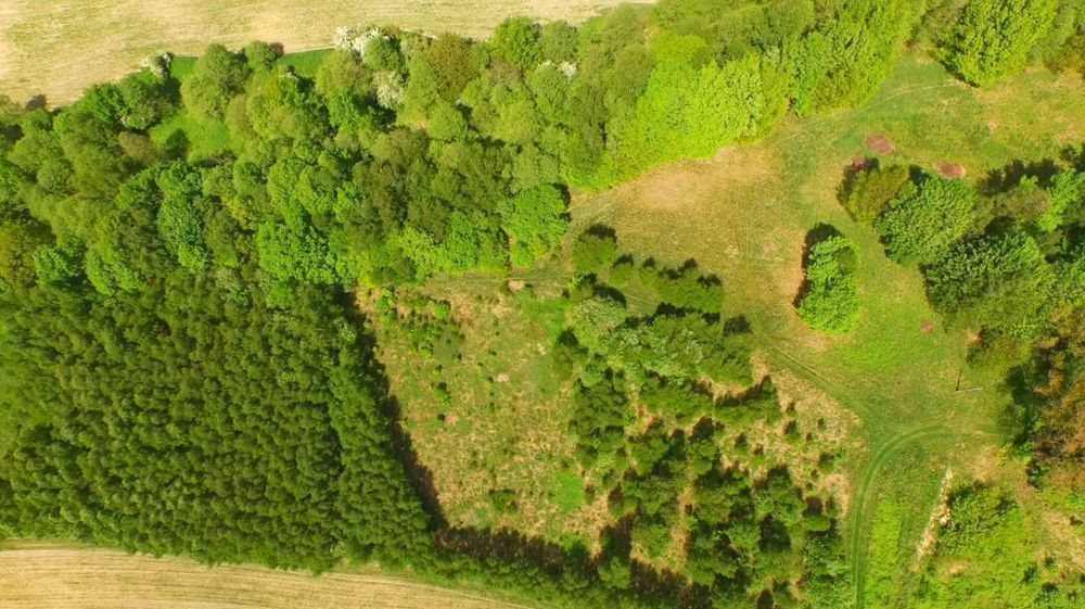 Działka budowlana na sprzedaż Mikołów, Mokre, DUŻA, WIDOKOWA  3341m2 Foto 4