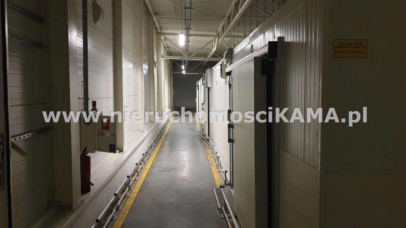Lokal użytkowy na sprzedaż Oświęcim  2890m2 Foto 8