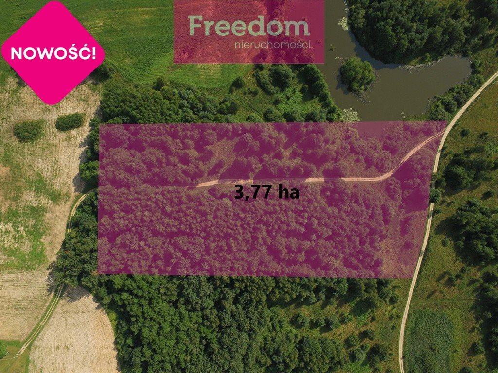 Działka rolna na sprzedaż Grzegrzółki  37700m2 Foto 3